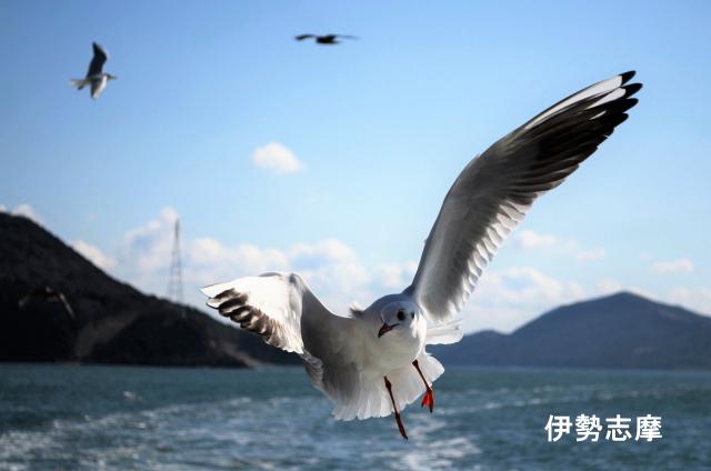 伊勢志摩-三重県の歯のホワイトニングは専門歯科、歯医者で